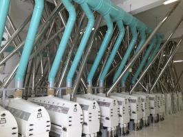2014 - Complesso molitario a grano tenero 350 T/24H-5